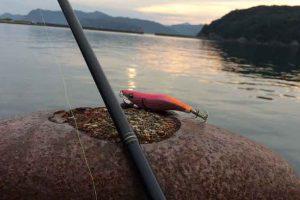 お馴染みの漁港で狙うは「アオリイカ」エギングシーズン開幕!