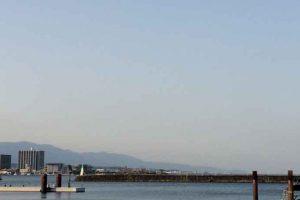 【琵琶湖】ネコリグで2018年初バス!タックルデータなどのメモ的なアレ!
